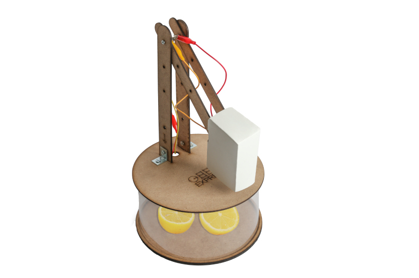 Organic Lamp  kit